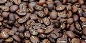 кофе марагоджип, кофе в зернах, кофе минск